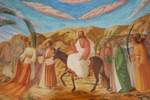 Palm Sunday in the Bible - Deep Study in the 4 Gospels 5