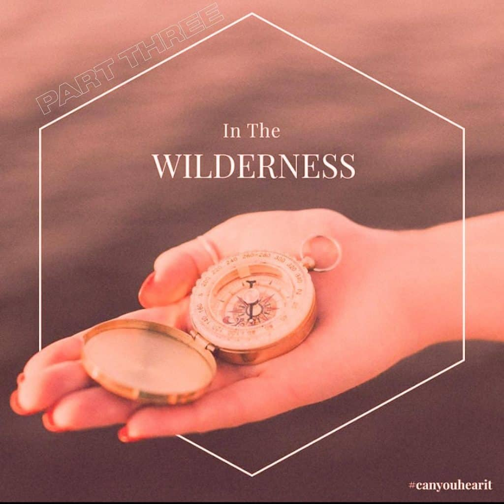 In the Wilderness Bible Sermon Part 3