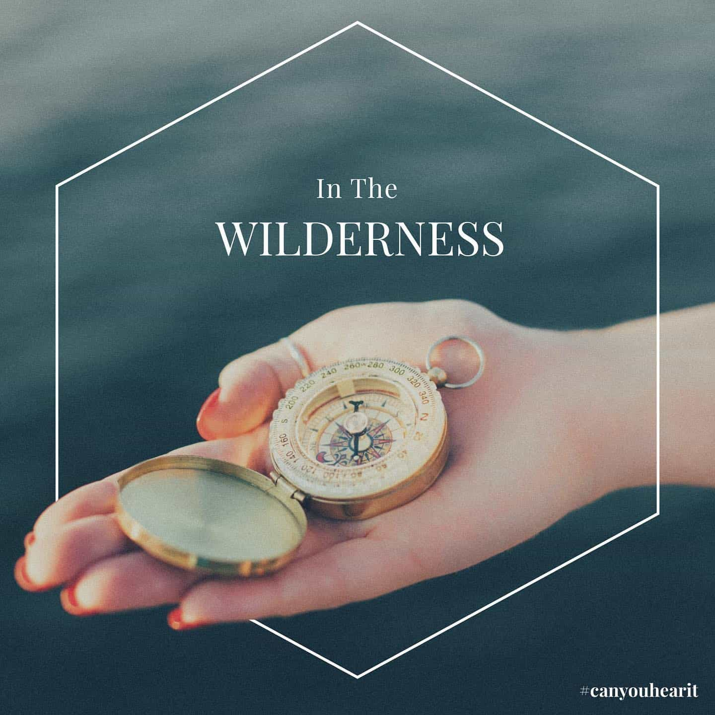 in the wilderness bible part 1